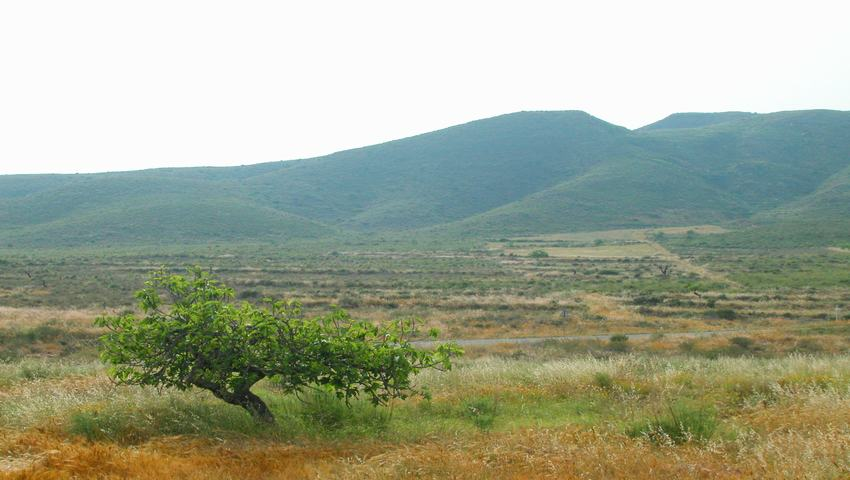 Rural land for sale in La Azohia