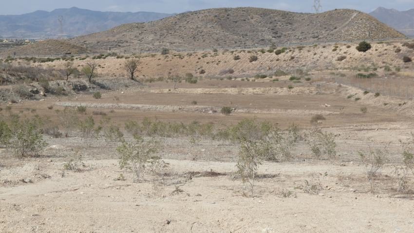 Rustic land for sale in Leiva